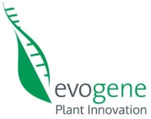 evogene-logo1-300x236