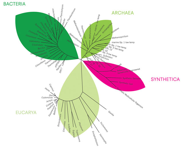 Synthetic Biology - Tree of life